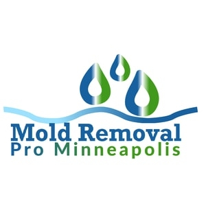 Mold remediation minneapolis